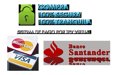 Pago Seguro Banco Santander